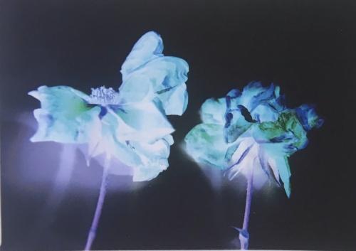 Kind of Blue: Postcard Show at ARTSPACE 1241