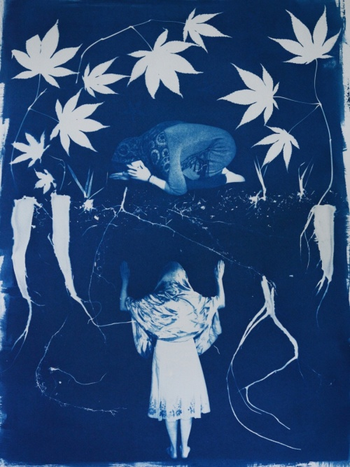 Therese Brown cyanotype
