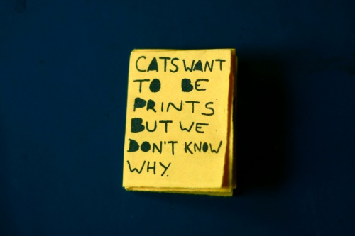Cats want to be prints by Elinor Breidenthal