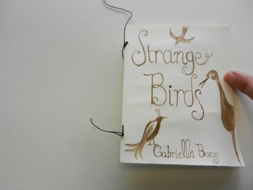 Strange Birds by gabriella boros