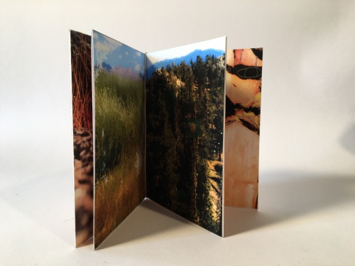 EARTH by Damini Celebre a small book