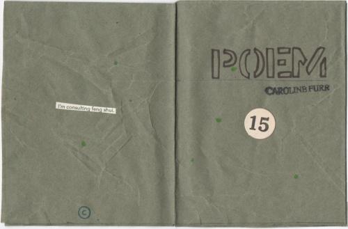 Poem 15 by caroline furr interior