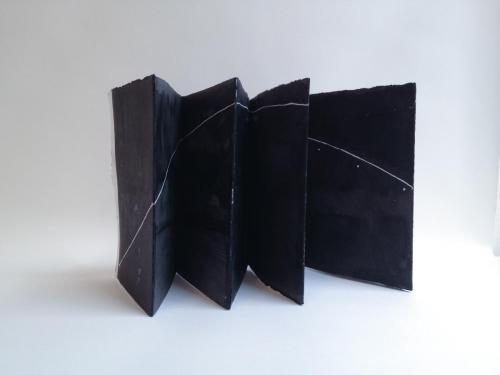 Ana Vizcarra Rankin, Ecliptic Book