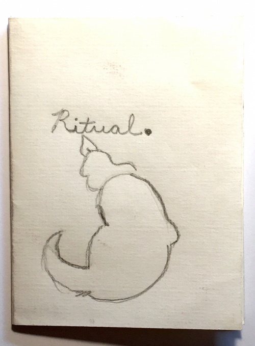 single-sheet book: cat drawing