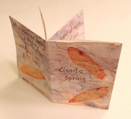 Cicada Spring by DJ Gaskin