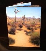 EARTH by Damini Celebre a small book