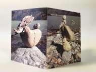 Wood and Stone, Lago Plomo, Chile John Dickerson, Heavy Bubble, websites for artists