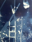 cyanotype, photogram